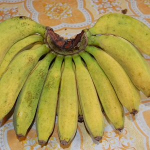 Fresh Banana Raja